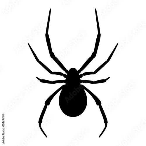 Vector image of spider silhouette Fotobehang