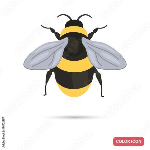 Slika na platnu Bumblebee color flat icon
