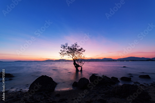 Photographie  Long exposure image of dramatic sunset or sunrise,sky clouds over mountain with alone tree in tropical sea