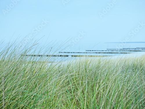 Keuken foto achterwand Noordzee Ostseestrand bei Ahrenshoop mit Dünen mit Strandhafer im Vordergrund