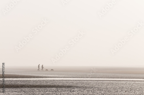 Foto auf AluDibond Hund Couple walking their dogs at the beach Plage de la Sirène Cap Gris Nez