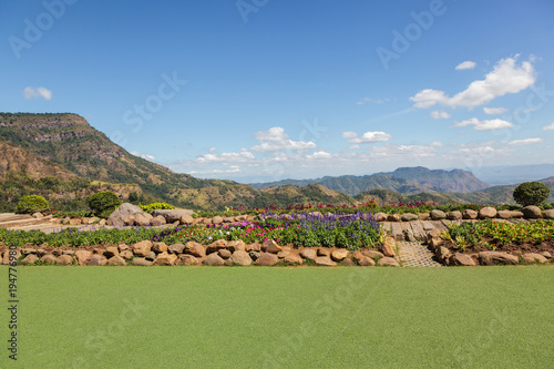 Resting place is artificial turf and flower garden.