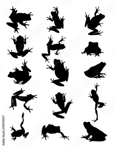 Fototapeta premium Sylwetka zwierząt żaby. Dobre wykorzystanie symbolu, logo, ikony internetowej, maskotki, znaku lub dowolnego projektu, który chcesz.