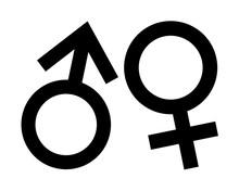 Gender Symbol Icon Pictogram Vector