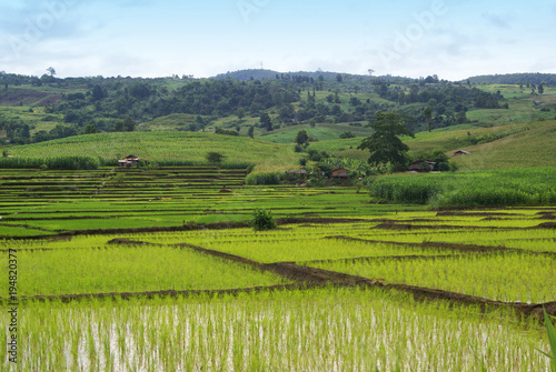 Tuinposter Pistache landscape, field, nature, sky, green, grass, meadow, mountain, summer, agriculture, hill, countryside, panorama, rural, blue, view, country, forest, tree, clouds, farm, cloud, hills, valley, mountains