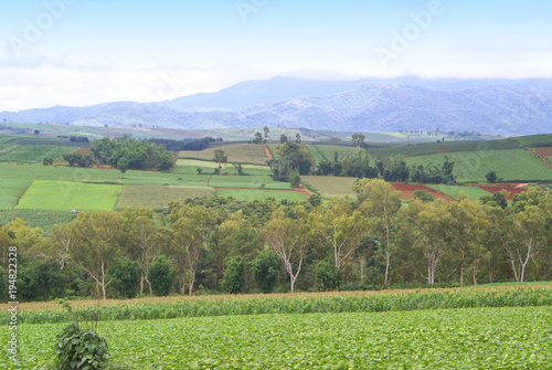 Foto op Canvas Pistache landscape, nature, sky, mountain, field, green, meadow, grass, hill, countryside, summer, view, mountains, panorama, forest, blue, rural, agriculture, tree, clouds, valley, country, cloud, trees, fiel