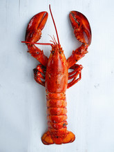 Rustic Cooked Lobster