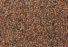 Brown Lentils Texture