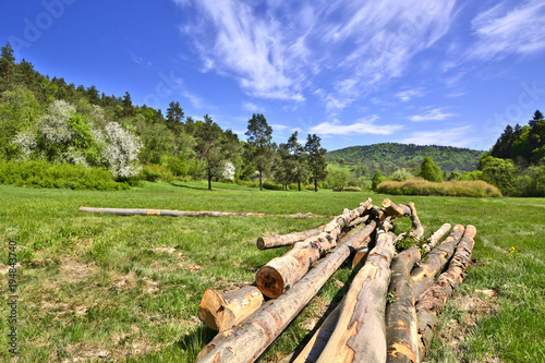 Foto op Canvas Pistache Timber logs in rural landscape, Beskid Niski, Poland