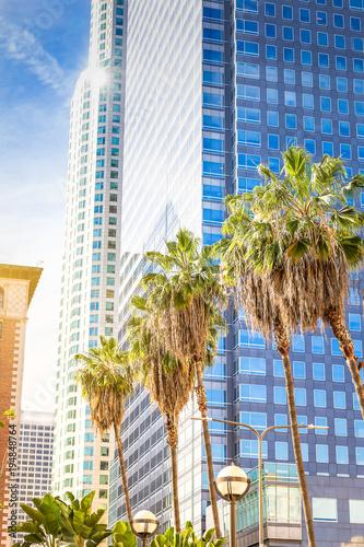 Plakat Palmy i drapacze chmur w mieście Los Angeles.