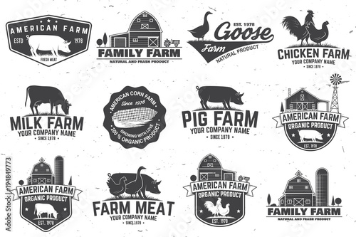 Fototapeta American Farm Badge or Label. Vector illustration. obraz