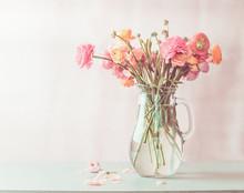 Pastel Pink Ranunculus Flowers...