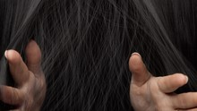 Hair Texture Background, No Pe...