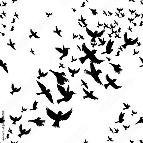 klucz-ptakow
