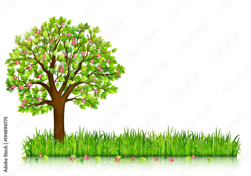 Wiosny natury tło z kwitnąć drzewa i zielonej trawy wektor <span>plik: #194890775 | autor: maribom</span>