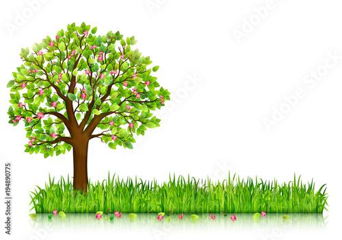 Wiosny natury tło z kwitnąć drzewa i zielonej trawy wektor