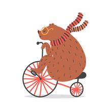 Vector Illustration Of Bear On...