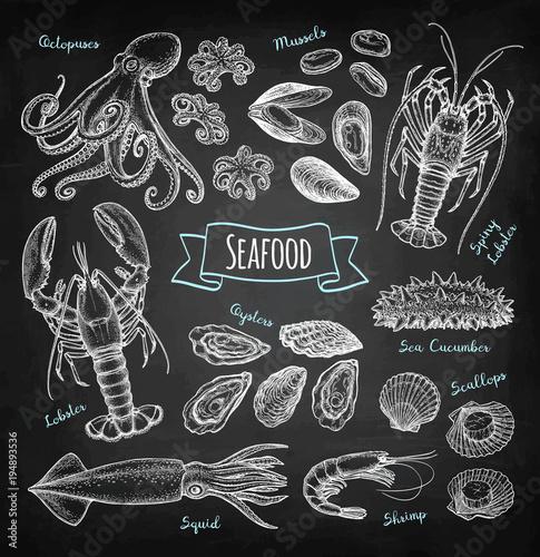 Valokuva  Seafood chalk sketch