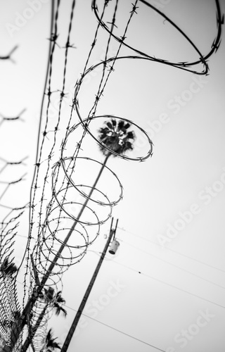 From the ground looking up at barbed wire and razor wire along a ...