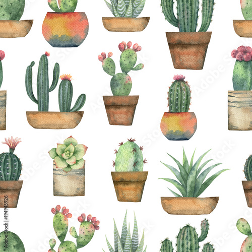 akwarela-bezszwowe-wzor-kaktusow-i-sukulentow-na-bialym-tle