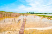 Beautiful Dry Lake Side View W...