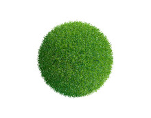 Grass Sphere. Isolated On White Background. Vector Illustration.