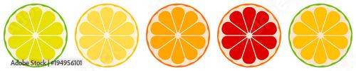 Fotografija vector citrus fruits: lemon, lime, tangerine, orange, grapefruit