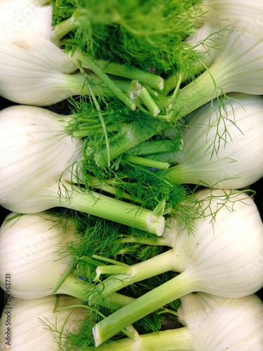 Fresh Fennel on a market