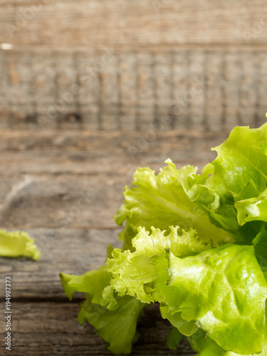 Foto op Aluminium Vruchten Green salad leaves on wooden rustic background. Copy space selective focus