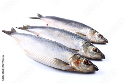 Fotobehang Vis Three Herring fish on a white background (isolated). Close up