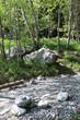Sentier dans les bois. Trail in the woods.