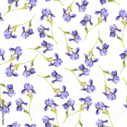 bezszwowy-wzor-z-lilym-irysem-kwitnie-na-bialym-tle-recznie-rysowane-akwarela