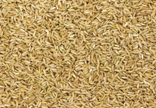 Brown Rice Texture