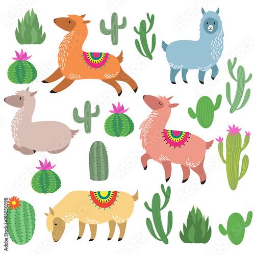 Poster de jardin Zoo Cute alpaca lamas. Wildlife vector llama characters