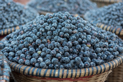 Straw basket full of fresh acai berries at a fair in the city of Belém, Brazil Canvas Print