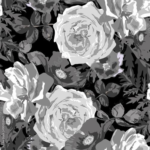 Tapeta z abstrakcyjnym malunkiem białego kwiatu róży