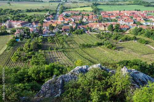 Fields and vineyards seen from so called Holy Hill in Mikulov town in Czech Repu Poster