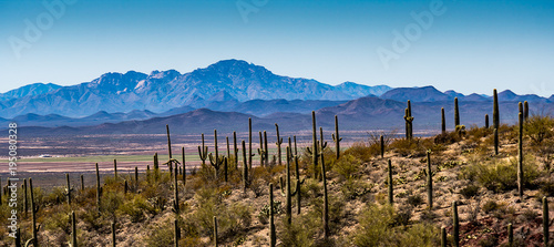Foto auf Leinwand Arizona Arizona Desert Mountains