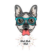 Hipster Geek French Bulldog. Dog Geek. Vector Illustration.