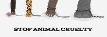 Stop Animal Cruelty With Eleph...