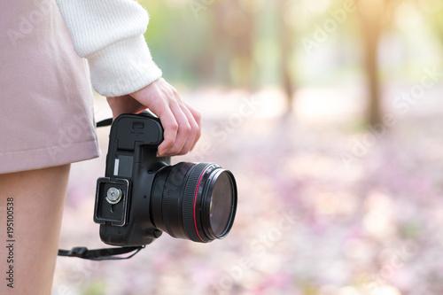 Fototapeta Female photographer holding digital camera with cherry blossom in park obraz na płótnie