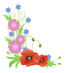 a bouquet of wild flowers red poppies isolated on white background