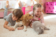 Children With A Dog At Home