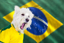Screaming Dog World Cup