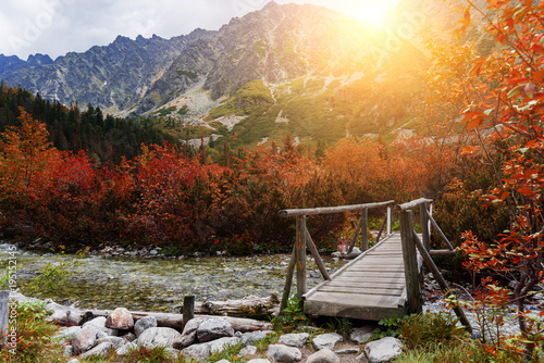 Valokuva Wooden footbridge across stream in the mountain forest, High Tatras