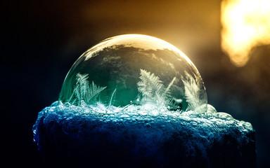 Frozen ice flower in a soap bubble