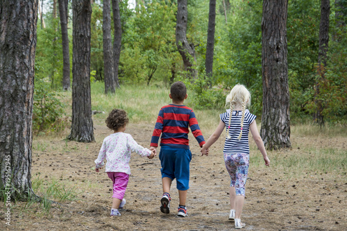 Fotografia, Obraz  In the summer in the forest, the boy and his friends are walking along the road