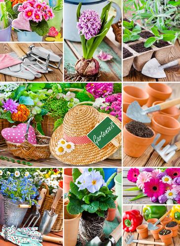 Canvas Prints Spices Garten - Gardening