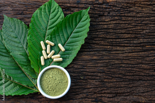 Fotografia  Mitragyna speciosa or kratom leaves with medicinal products in capsules and powd