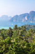 Tropical landscape. Phi-phi island